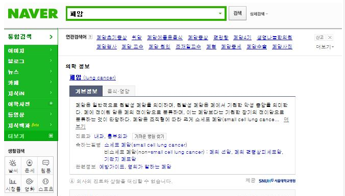 Screenshot of Naver search. Naver displays its own content at the top of the search, followed by sponsored links.