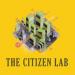 アイコン Citizen Lab
